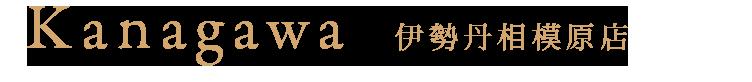 Kanagawa sagamihara