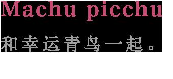 Machu picchu:和幸运青鸟一起。